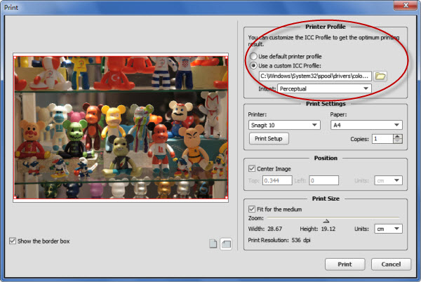 How to Edit and Print Photos with the ICC Profile on Windows/Mac