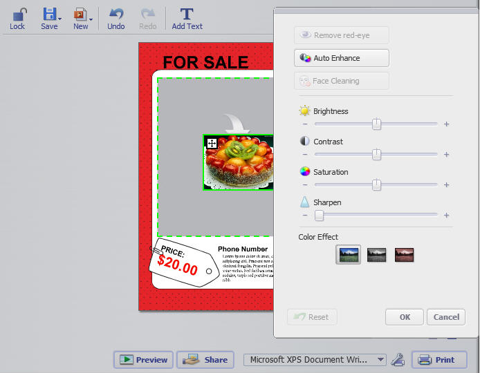 how to make a powerful with easy to handle flyer software for mac